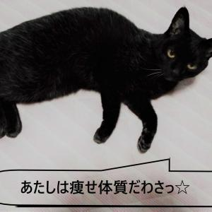 コロナ太り➡コロナダイエット?