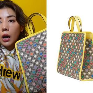 仲 里依紗(なか りいさ)さんが現場バッグとして使っているGUCCIのキッズバッグ