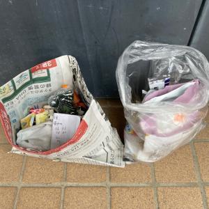 ゴミを拾ってぽいぽいのぽい活#98