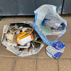 ゴミを拾ってぽいぽいのぽい活#101