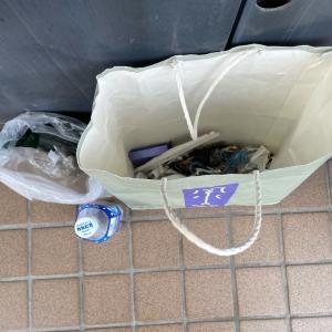 ゴミを拾ってぽいぽいのぽい活#111