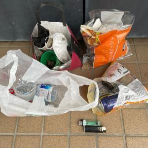 ゴミを拾ってぽいぽいのぽい活#112