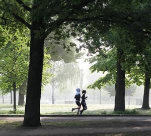 公園監視ラン