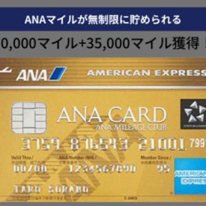 一撃でビジネスクラスの海外旅行が実現 ANAアメックスゴールドのキャンペーンを紹介 ANAマイルを無限に貯められるカード