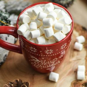 なぜ人間だけが糖質を求める?なぜ糖質制限が必要なのか