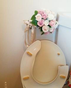 トイレの便座が割れたなり