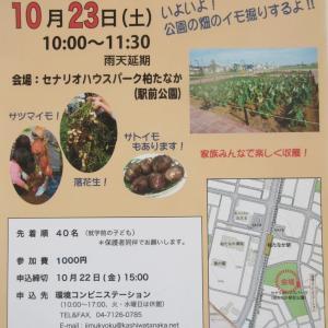 セナリオハウスパークで収穫体験が開催されます(´∀`)