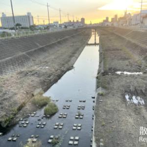 治水川緑地散歩2
