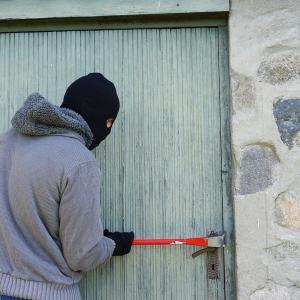 絶対に遭遇したくないカナダの変わった不法侵入者 盗まれたものは...?