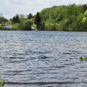 今夏、ケベック中のアクティビティは無料開放 公園でBBQやアルコール解禁