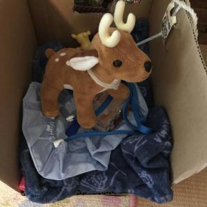 【驚異の回復】人工呼吸器をつけた大けがをした鹿