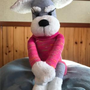 【初登場】ソックシュナto愛犬to鳩サブレー?