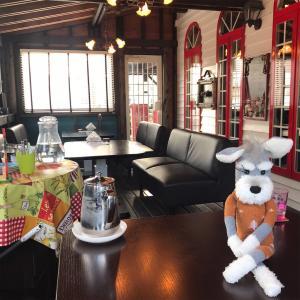 【シュナる旅】愛犬と入れるお店🍕 イタリアンへGo![ソックシュナとおでかけ]
