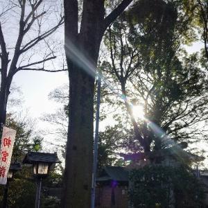 1/15のバイナリー結果は&共通テスト1日目!
