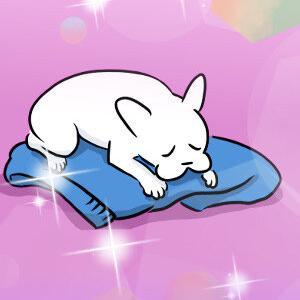 「犬が飼い主の服の上で寝るのは、さびしいから」って、都市伝説だと思う。