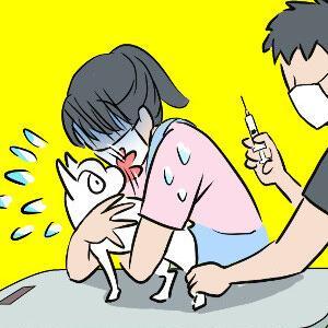 ワクチン接種のついでにフィラリア検査と予防薬…会計に血の気が引く