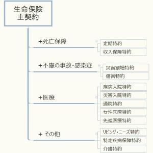 生命保険の商品と特徴(7)保険の特約とは