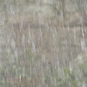 大型運転時、雨天で気をつける事…