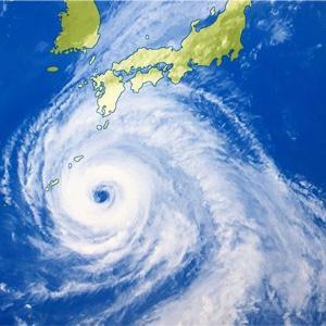 台風日勤!