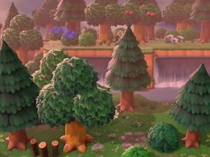 森の隠れ家へ繋がる秘密の通路