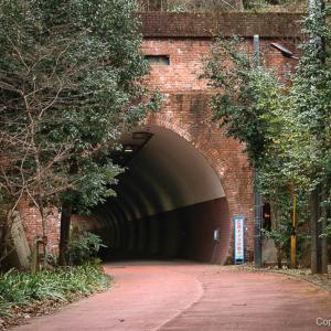 心霊スポット?満地トンネルを旅する