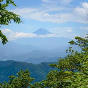 初夏だけど涼しい、展望と滝と花の、三頭山登山