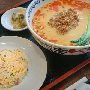 40年の歴史!青梅市・天龍の担々麺は、クリーミーな濃厚胡麻スープ!