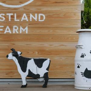 ジェラートとアフォガートが美味い、清水牧場・WEASTLAND FARM