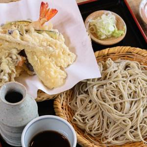あきる野・菅生の「よしの」研ぎ澄まされた、絶品・十割蕎麦の天ざる
