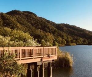 湖岸緑地「曽根沼公園」はコアなキャンプ好きの集まる聖地だった。