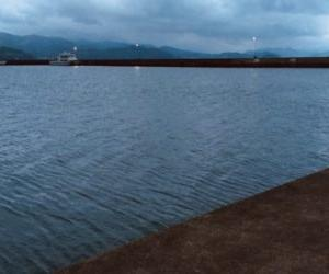 【福井県の釣り】西津漁港でエギング!小浜のアオリイカ【4月】