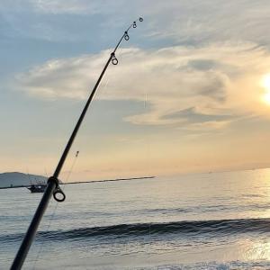 キス釣りたい。