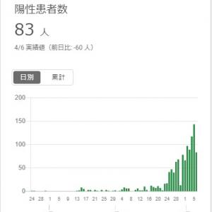新型コロナで保健所がパンク 東京のデータは信用できるのか?