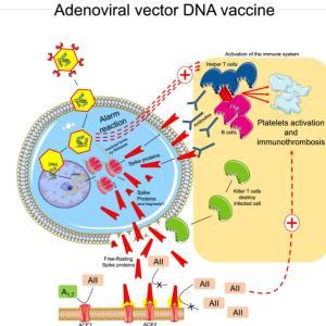 新型コロナ、アストラゼネカ製ワクチンの議論が再燃?