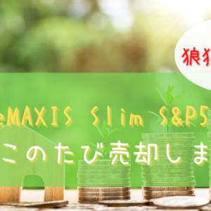 【狼狽売り】VOOとeMAXIS Slim S&P500を売却
