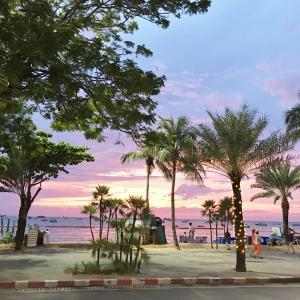 2017年11月タイ旅行記3「パタヤトリップ~遭遇~」その1 ビジネスクラスでタイへ
