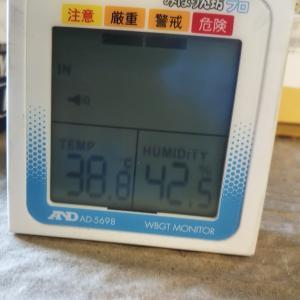 暑い(*_*) 全国1位新潟県三条市 そんなさなかで落し物見つかる編