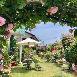 ブログでオープンガーデン2021①〝門柱から玄関エントランスのバラ達〟