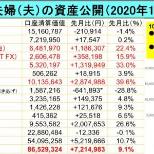 2億り夫婦(夫)の資産公開2020年11月:今月は+721万円