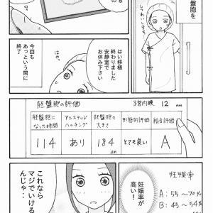 妊活記録73 (胚盤胞移植)