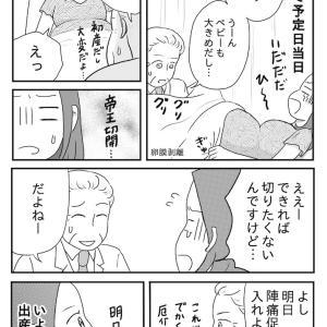 妊活記録177 (出産予定日)