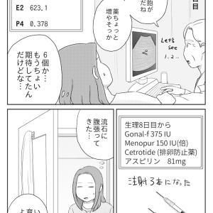 妊活記録2人目(17〜19)