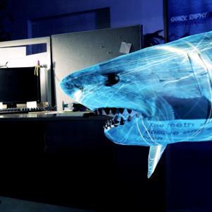 BAD CGI SHARKS/電脳鮫  🏃♀️🏃♂️💨 🦈🦈🦈(Bad CGI Sharks)