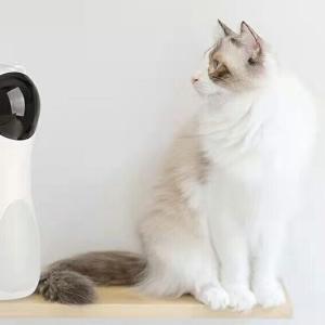 【猫のおもちゃ】年老いた猫ちゃんにも最適♪♪適度な運動で健康を維持しよう♪♪(。´・∀・)ノ