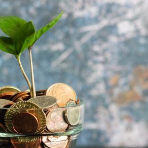 【収益公開】「投資ブログで副業収入→株に投入」の黄金システムを構築せよ