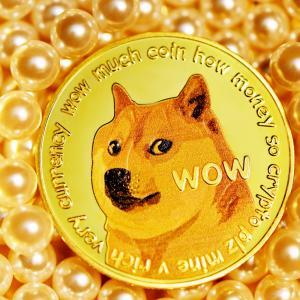 ドージコイン(DOGE)をショート(空売り)した理由とやり方を解説