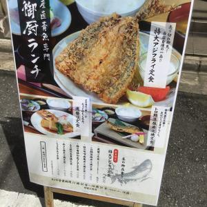 B-FIT西新宿本店周辺の飲食店〜鯖の塩焼きとアジフライ〜