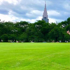 芝生の綺麗な新宿御苑