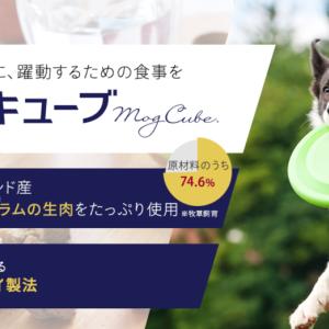 愛犬に おすすめドッグフード5選(栄養価・無添加・料金など)