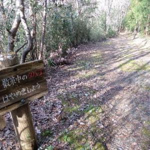 【下総神崎】こうざき自然遊歩道